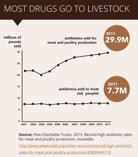 distribution of antibiotics