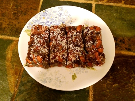 Coconut Raisin Protein Bar
