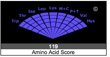 Spinach Amino Acids